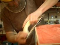 Living Furniture project Video thumbnail